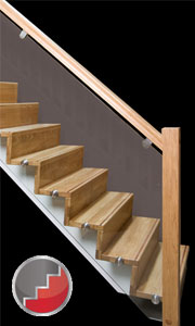Z-Vision contemporary staircase